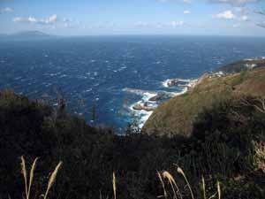 「鳥の尾」から御蔵島の港を望む
