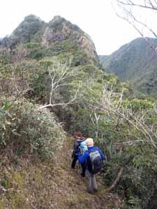 御蔵島の稜線を歩く