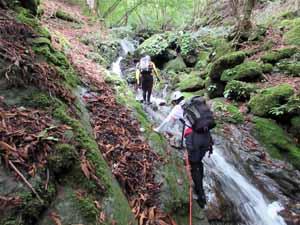 小篠沢の4段12m滝を登る