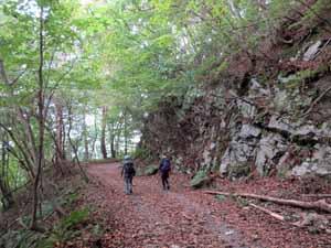 林道を両石へ向かう